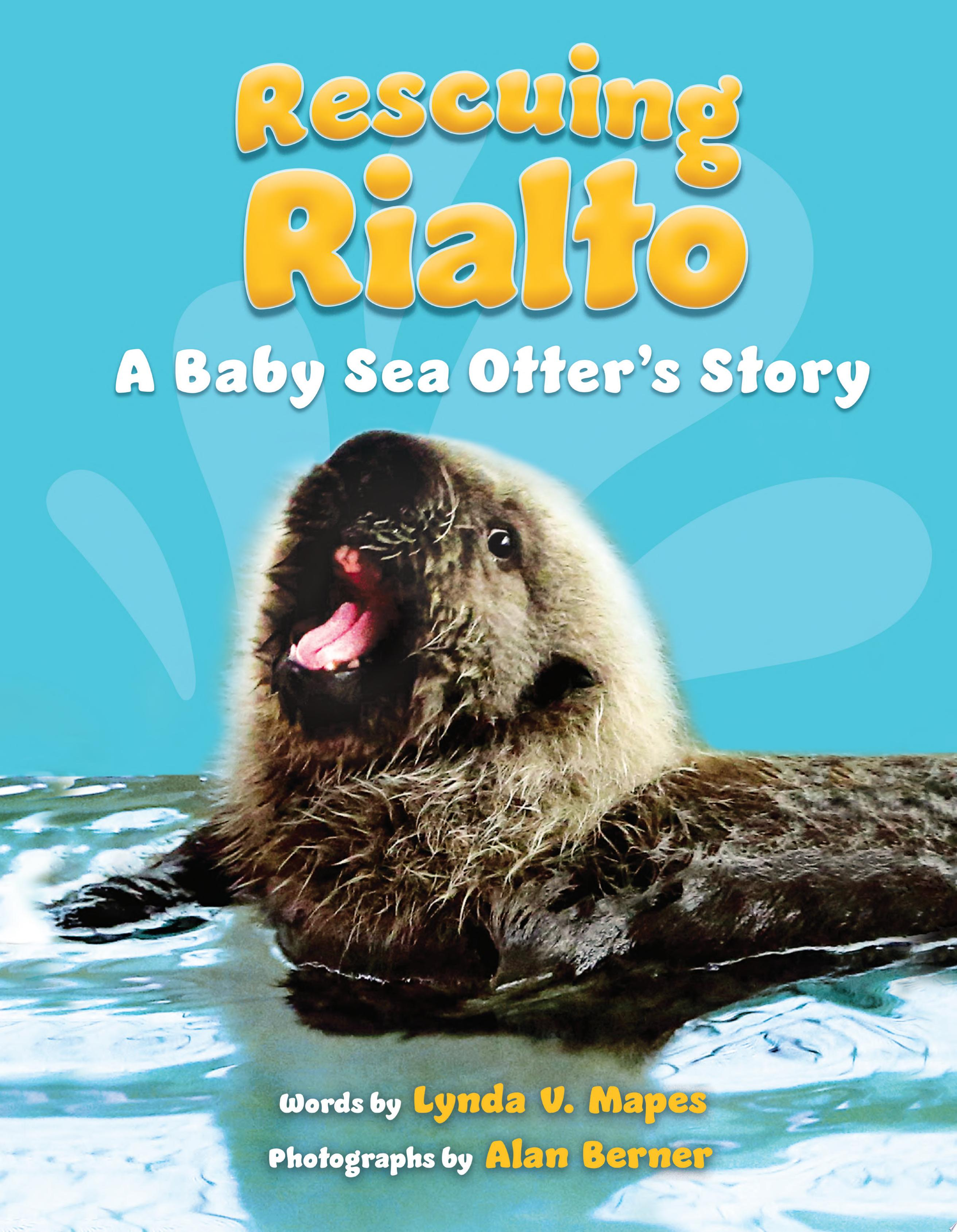 "Image for ""Rescuing Rialto: A Baby Sea Otter's Story"""